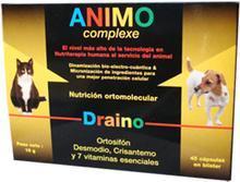 Nutrición ortomolecular en el perro con insuficiencia renal crónica (Ortosiphon y vitaminas del complejo B)