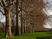 Parques Londres: Caminando corazón verde ciudad (1era parte)