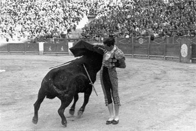 REPUBLICA, GUERRA CIVIL Y TOROS II