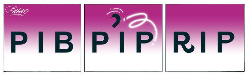 PIB-RIP