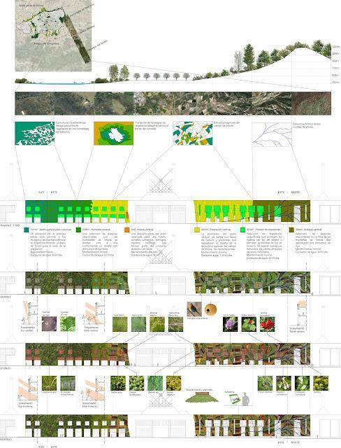 Proyecto para el jardín vertical del palacionde congresos de Vitoria-Gasteiz.