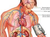 ventajas tratamiento antihipertensivo combinado inicial
