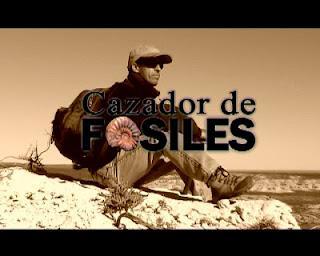 Cazador de Fósiles