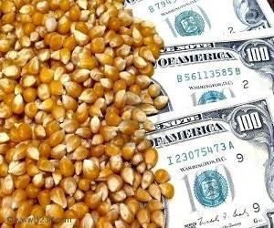 Guatemala + dinero - hambre: cuando va a funcionar la ecuacion?