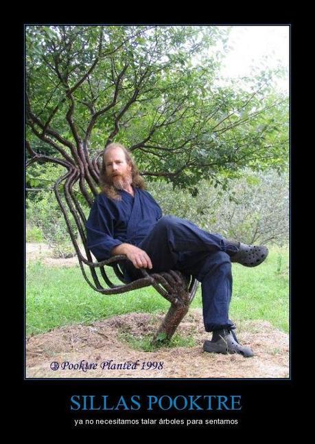SILLAS POOKTRE - ya no necesitamos talar árboles para sentarnos