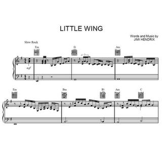 Little wing / Main redux