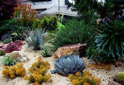 jardines rusticos aridos