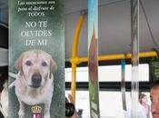 Campaña contra abandono autobuses Badajoz