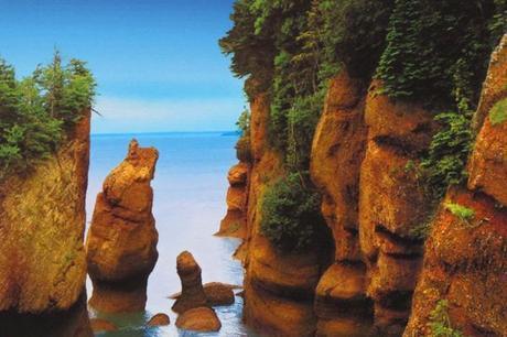 """Pasear por el """"suelo del mar"""", en Hopewell Rocks"""