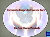 Seminario Virtual Formación Terapeutas Flores Bach