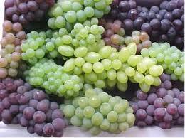 u4 Racimos de uva: la fruta dorada que no engorda