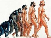 tren evolución