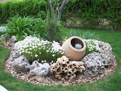Elegir plantas para jardines de rocalla paperblog for Decoracion con plantas para jardin