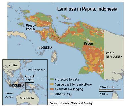 Carbon Conservation Papua
