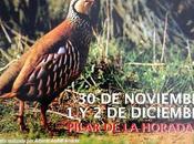 Feria Provincial Perdiz Reclamo 2012 Pilar Horadada