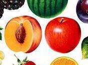 Guia roja verde alimentos transgenicos