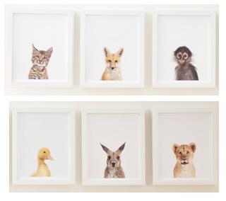 Animales beb s para decorar habitaci nes de beb s paperblog - Cuadros para habitacion de bebe ...