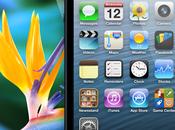 iPhone grande pasado desde