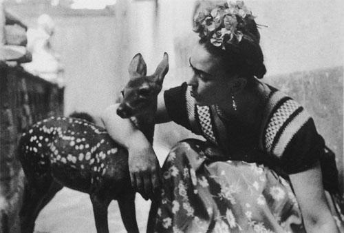 Modalterna. Edición Especial. Miradas de Frida Kahlo