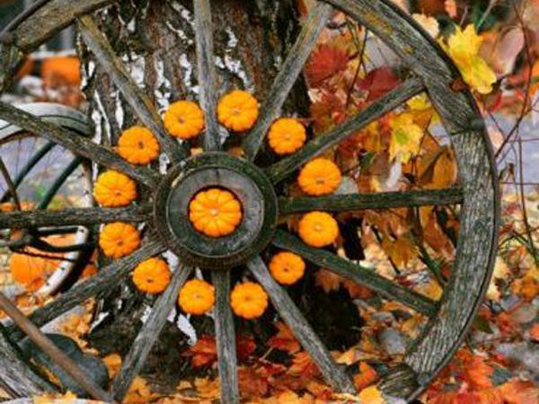 Decoracion Jardin Halloween ~ jard?n decoraci?n halloween Dstudio estudio paisajismo
