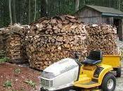 Centros educativos emplean biomasa