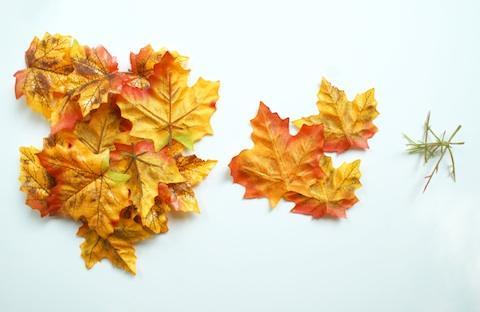 Decoraci n de oto o centro de mesa con hojas paperblog - Hojas de otono para decorar ...