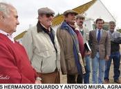 Viaje cultural miura: casa toreo organiza visita mítica ganadería