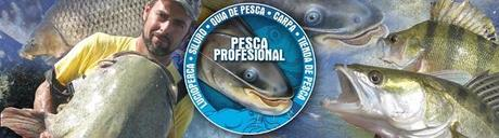 GUIAS DE PESCA DEL SILURO Y LUCIOPERCA SILURO GOONCH