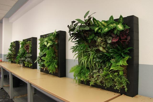 Im genes del curso de jardines verticales en madrid for Muros verdes naturales