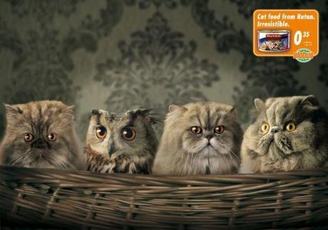 Publicidad animal