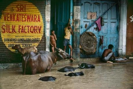 Right as Rain - Steve McCurry