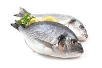 ¿Qué propiedades tiene el pescado?