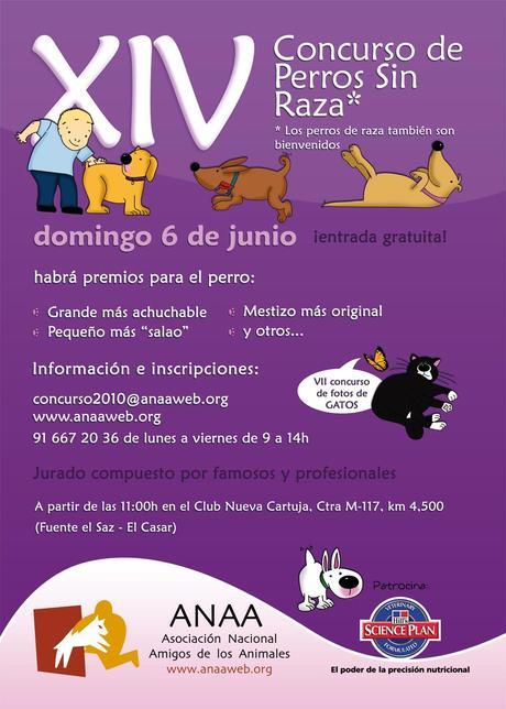 ANAA organiza su XIV concurso de Perros Sin Raza