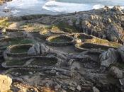Castro Baroña: natura arqueología