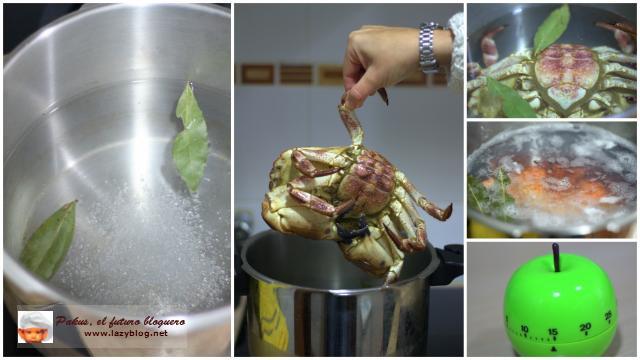 C mo cocer bien un buey de mar o una centolla paperblog - Como cocinar un buey de mar ...