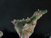 Oficinas Información Turística isla Tenerife