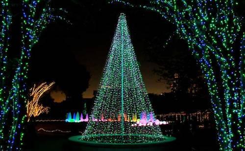 Un jard n iluminado para navidad paperblog for Iluminacion arboles jardin