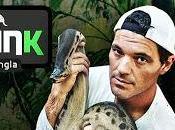 Frank jungla