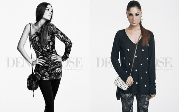 Denny Rose: Winter 2013