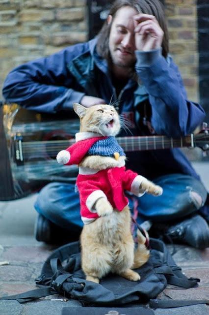 Bob, el gato callejero que cambió la vida a un músico de