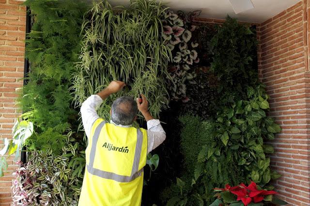 Mantenimiento de jardines verticales paperblog for Sistema de riego jardin vertical