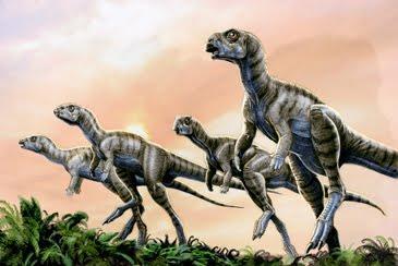 llamaban-trinisaura-L-SVe2IT.jpeg