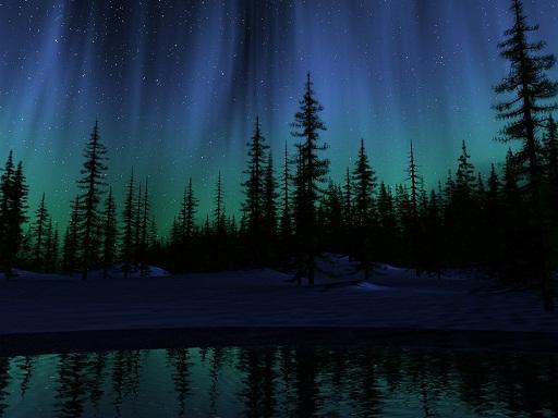 Blue Christmas Tree Forum Avatar: Paisajes De Noche