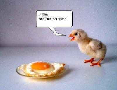 [Imagen: pollo-pio-chistes-pollos-L-QD_T2z.jpeg]