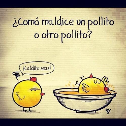 [Imagen: pollo-pio-chistes-pollos-L-S4NdPq.jpeg]