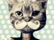 bigote sigue reinventando