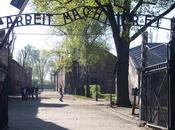 Auschwitz. museo horror