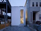 Jardin interior arquitectura