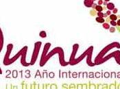 Comité boliviano quinua iniciará funciones próximamente