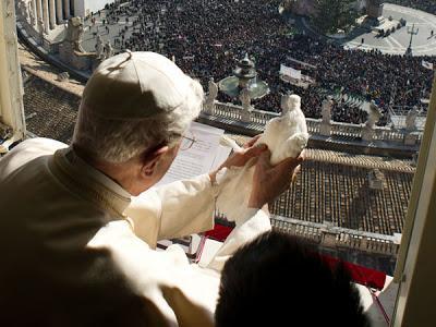papa suelta paloma de la paz atacada por gaviota